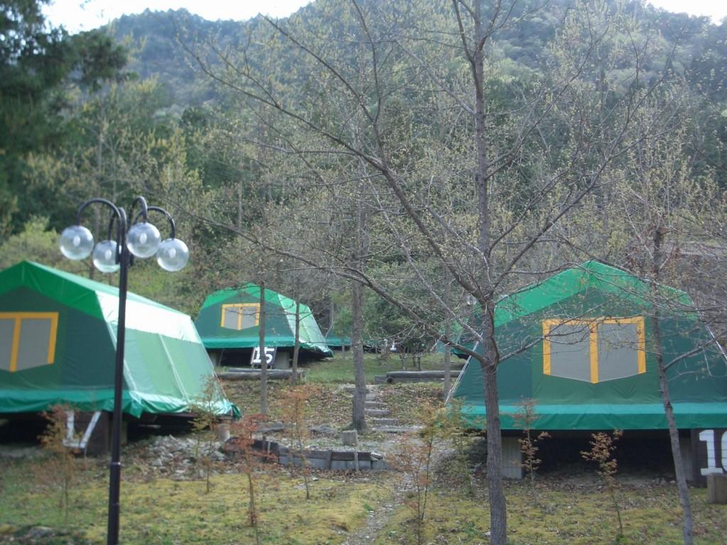 キャンプ場常設テント 1枚目
